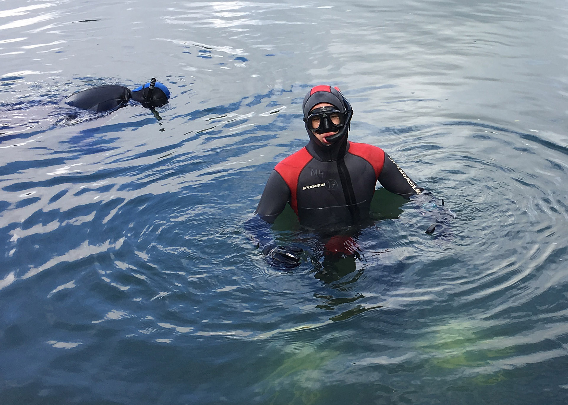 Snorkkelisukelluskurssit Riihimäen Urheilusukeltajat